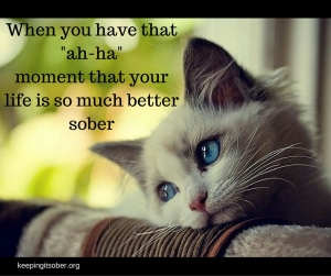 Keeping it Sober Memes