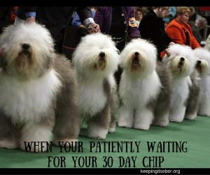 when your patiently waiting for your 30 day chip
